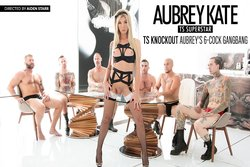 TS Knockout Aubrey's 6-Cock Gangbang